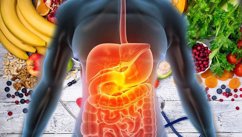 veganlık ve sağlık